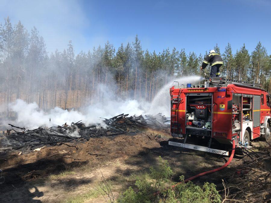 Pożar poszycia leśnego m. Nowe Pole (gm. Sulęczyno)
