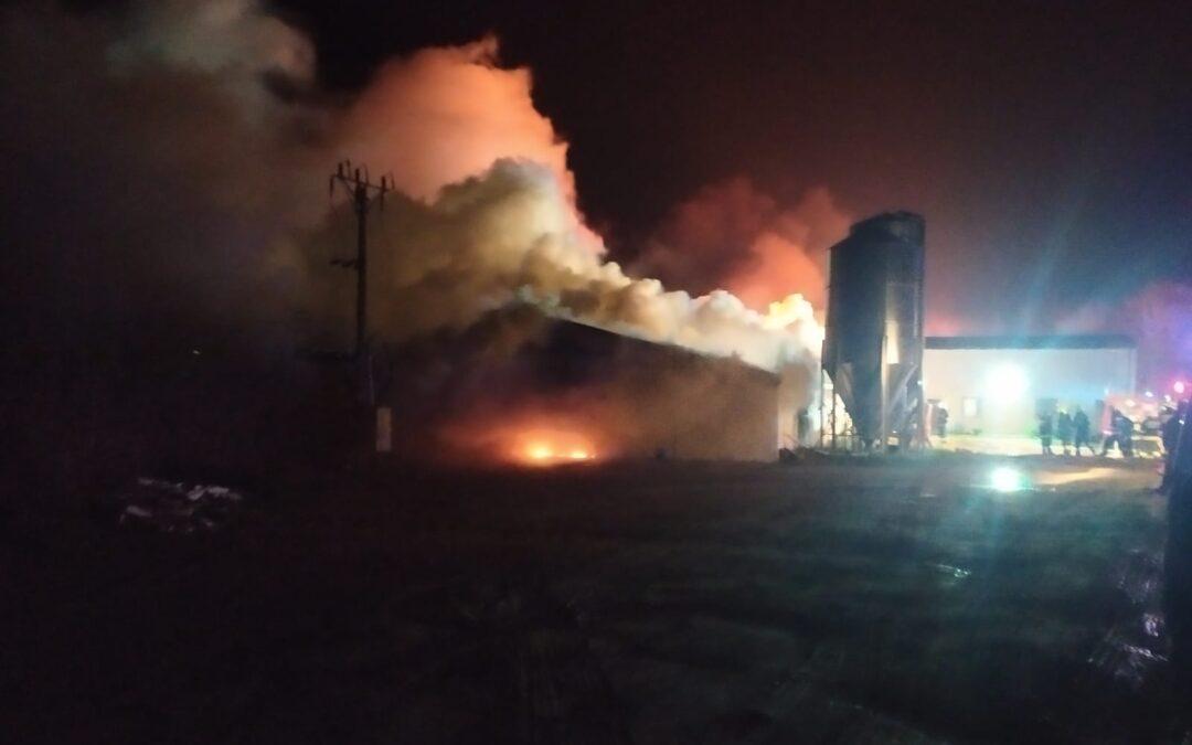 Pożar budynku inwentarskiego m. Podjazy